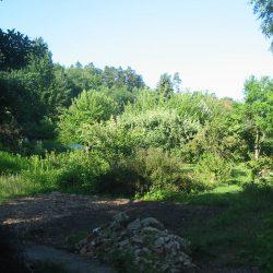 morgens im Garten