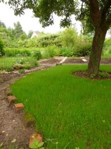 neongrünes Gras