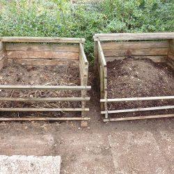 Kompost umgesetzt (li), frische Komposterde (re)