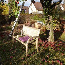 letzte Sonnenstrahlen unterm Apfelbaum genießen