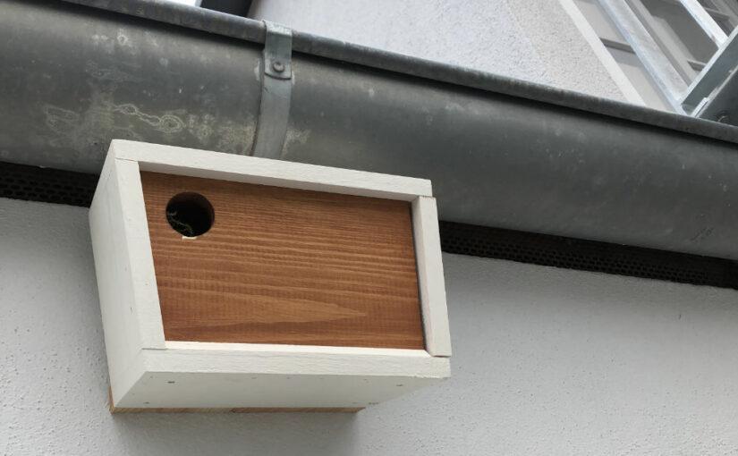 Vogel-Nisthilfen am Haus